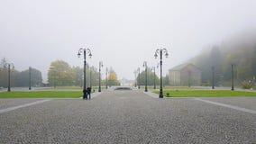 Visión de niebla fotos de archivo