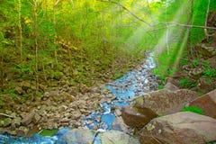 Visión desde arriba de la cascada que cae abajo, paisaje del bosque con una cascada, donde comienza la pendiente para regar Imagen de archivo libre de regalías