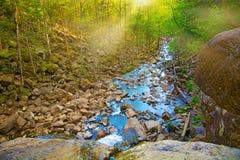 Visión desde arriba de la cascada que cae abajo, paisaje del bosque con una cascada, donde comienza la pendiente para regar Imagenes de archivo