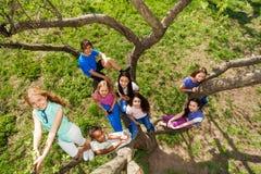 Visión desde arriba de los adolescentes que se sientan en árbol Imagen de archivo