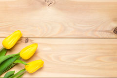 Visión desde arriba de tulipanes amarillos en una esquina de un festivo Imagen de archivo libre de regalías
