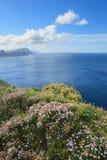Visión desde Cabo de Buena Esperanza Fotografía de archivo