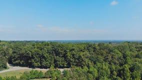 Visión desde el abejón sobre árboles en los suburbios del parque y de maderas con el cielo azul metrajes