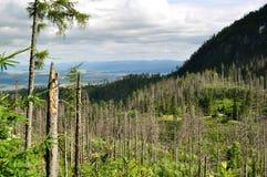 Visión desde el alto Tatras, parque nacional en Eslovaquia Imagen de archivo