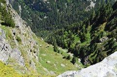 Visión desde el borde de la montaña abajo a las rocas de la vertical y a los árboles de pino verdes Fotografía de archivo