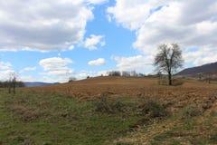 Visión desde el cielo azul Foto de archivo