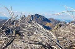 Visión desde el cuerno - búfalo del Mt Imagen de archivo libre de regalías
