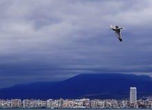 Visión desde el mar en la ciudad turca Esmirna Imágenes de archivo libres de regalías