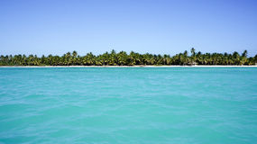 Visión desde el mar en la playa de Isla Saona Imágenes de archivo libres de regalías