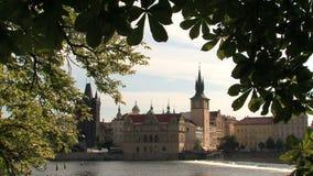 Visión desde el parque, Praga almacen de metraje de vídeo