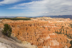 Visión desde el punto de la inspiración en Bryce Canyon Fotos de archivo libres de regalías