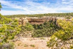 Visión desde el punto de Sun - Mesa Verde Fotografía de archivo
