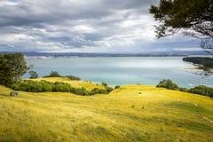 visión desde el soporte Maunganui Nueva Zelanda Foto de archivo libre de regalías