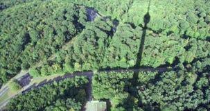 Visión desde el top de árboles del verde de Suttgart de la torre de la TV en el pueblo de las tierras del verde de Alemania de la almacen de video