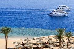 Visión desde el top a una playa arenosa hermosa con los ociosos del sol, las camas del sol y las sombrillas el vacaciones en una  imágenes de archivo libres de regalías