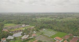 Visión desde el ubud superior Indonesia almacen de video