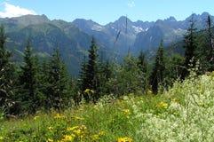 Visión desde Gesia Szyja en las montañas de Tatra Imagen de archivo
