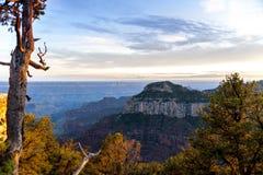 Visión desde Grand Canyon Fotos de archivo libres de regalías