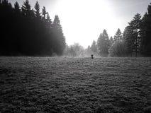 Visión desde la colina en Banska Stiavnica Eslovaquia Fotos de archivo