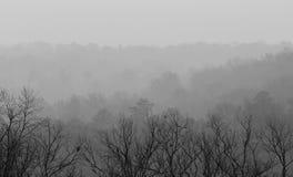 Visión desde la montaña de Ruffner en un día de niebla Imagenes de archivo