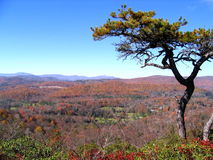 Visión desde la roca plana de la ruta verde azul de Ridge Imagen de archivo
