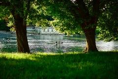 Visión desde la sombra de dos barcos recreativos que hacen el rowing y deportes en las aguas del río Po foto de archivo libre de regalías