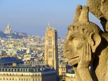 Visión desde la torre de Notre Dame, París Foto de archivo libre de regalías