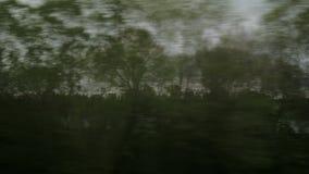 Visión desde la ventana del paisaje del coutryside, árboles, bosques, casas del tren del montar a caballo contra el cielo nublado metrajes