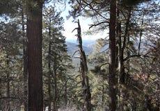 Visión desde las montañas en Denver Fotos de archivo