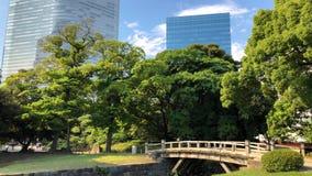 Visión desde los jardines de Hamarikyu con su jardín grande y atractivo del paisaje en Tokio, río de Sumida, Tokio, Japón metrajes