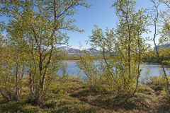 Visión desde Nikkaloukta en Suecia septentrional imagen de archivo libre de regalías