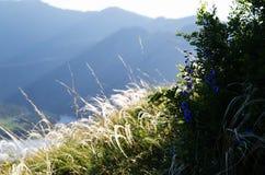 visión desde una alta montaña en el paisaje natural Imágenes de archivo libres de regalías