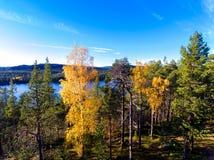 Visión desde una colina a un lago sobre bosque en colores del otoño en Lapl Foto de archivo