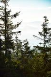 Visión desde una montaña Imagen de archivo