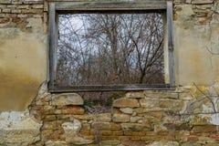 Visión desde una ventana de madera de una casa vieja de la ruina cerca del bosque Imagen de archivo libre de regalías