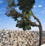 Visión en Amman imagenes de archivo