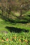 Visión en declive desde el castillo Dubovac en resorte temprano Fotos de archivo