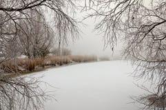 Visión en el hielo nevoso de un pequeño lago foto de archivo