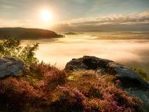 Visión en el valle brumoso profundo sobre los penachos del brezo Picos de la colina en niebla cremosa Fotos de archivo libres de regalías