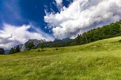 Visión en las montañas suizas Fotografía de archivo