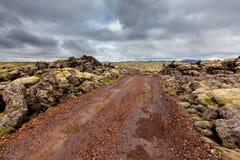 Visión en los llanos islandeses durante verano Imágenes de archivo libres de regalías