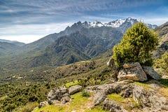 Visión hacia las montañas de Asco en Córcega Foto de archivo