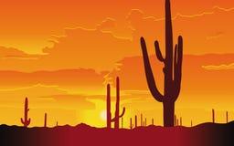 Visión hermosa sobre el desierto