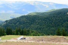 Visión horizontal con el sheepfold y las montañas Sheepfold de madera i Foto de archivo