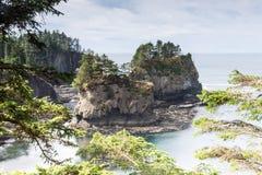 Visión impresionante en la costa de Washington en la adulación del cabo adentro Fotografía de archivo