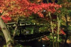 Visión magnífica, color de la caída en Eikando Zenrinji, Japón en el otoño Imagenes de archivo