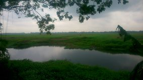 Visión nublada verde fotografía de archivo