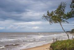 Visión otoñal en la playa báltica, Vidzeme, Letonia Fotografía de archivo