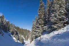 Visión panorámica abajo de un valle alpino de la montaña Foto de archivo libre de regalías