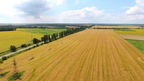 Visión panorámica desde el aire a los campos y a los prados almacen de metraje de vídeo